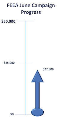 a thermometer image shows 45% of $50,000 goal