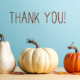 Thank you message with pumpkins on a blue background